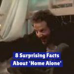 Wild Home Alone Trivia